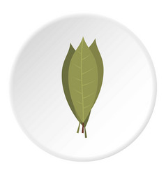 Bay laurel leaves icon circle vector