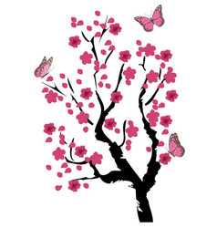 cherry blossom tree vector image vector image