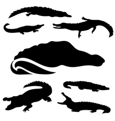 Crocodileset vector