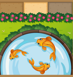 Three fish in the pond vector