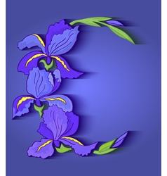 Iris frame vector image vector image