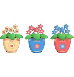 three pots of violets vector image