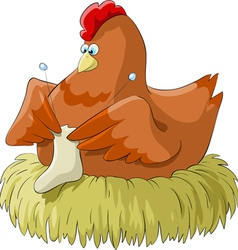 chicken knits vector image