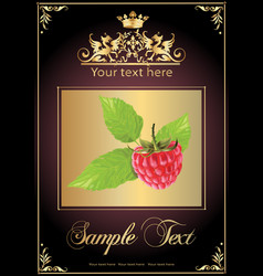 chocolate raspberry realistic vector image