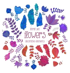Set of colorful flowers and branches vector image