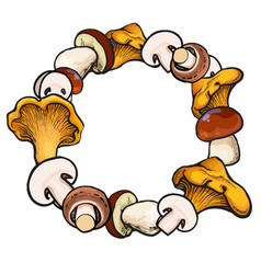 Round frame of sketch edible mushrooms with place vector