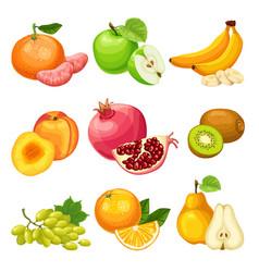 Cartoon healthy fruits set vector