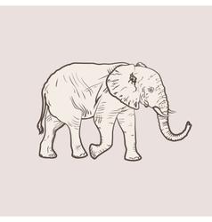 Big elephant in profile walking vector