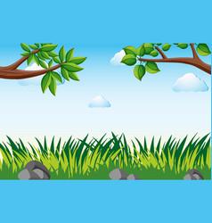 Scene with grass in garden vector