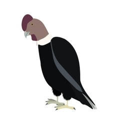 silhouette condor animal bird icon vector image