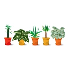 Five pots with plants vector