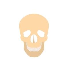 Human skull icon vector image vector image