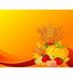 plump pumpkins vector image