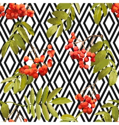 Autumn rowan berry background seamless pattern vector