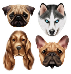 realistic dog breed icon set vector image