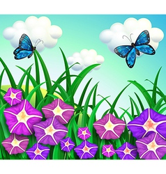 A garden at the hill with purple flowers vector image
