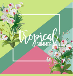 Tropical orchid flowers summer banner vector