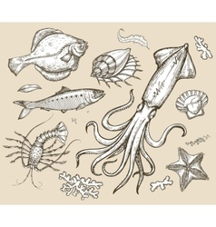 Hand drawn sketch set seafoodunderwater world vector