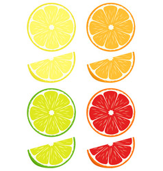 citrus slices set vector image