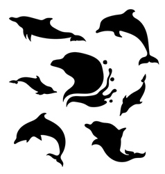 Dolphinset vector