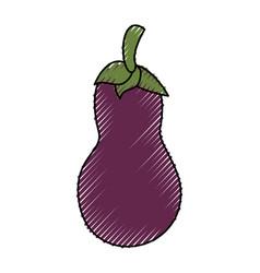 Eggplant delicious vegetable vector