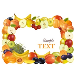 fruit design background vecto vector image