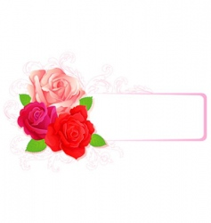 roses banner card vector image vector image