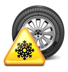 Wheel with Sign vector image vector image