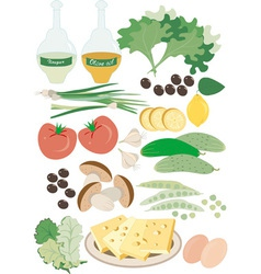 Wholesome food salad vector