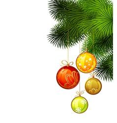 Christmas branch of fir tree vector image