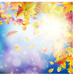 Autumnal natural bokeh with sun eps 10 vector