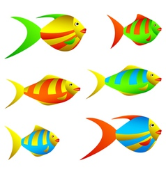colorful fish vector image vector image