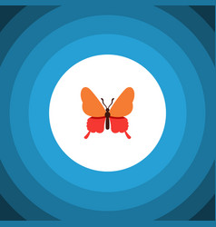 Isolated butterfly flat icon danaus plexippus vector