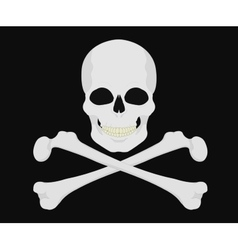 Jolly Roger Skull with crossbones vector image vector image