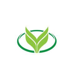 oval leaf eco logo vector image vector image
