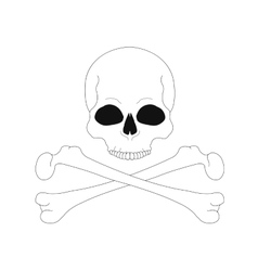 Jolly roger contour lines skull with crossbones vector