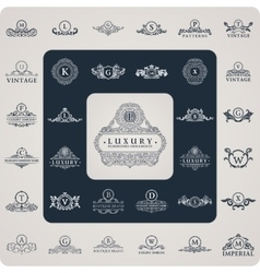 Vintage flourishes elements calligraphic vector