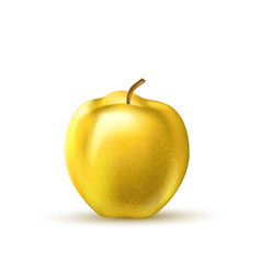 realistic yellow apple fruit 3d isolated vector image