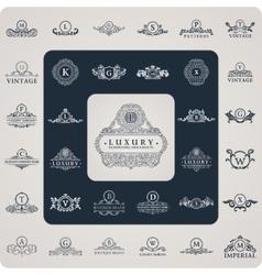 Vintage flourishes elements calligraphic vector