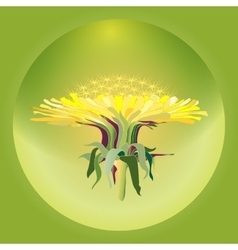 with dandelion vector image