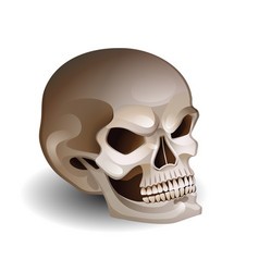 graphic skull with fearful smile vector image
