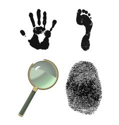 investigative set vector image