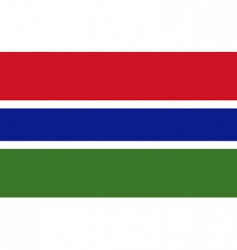 Gambia flag vector
