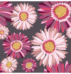 Gerbera dark vector