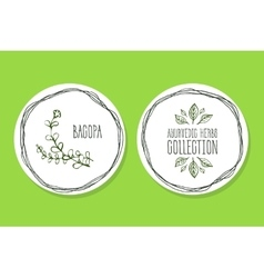 Ayurvedic herb - product label with bacopa vector