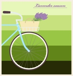 Bicycle with lavender in basket vintage poster vector