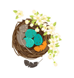 birds nest with eggs vector image vector image