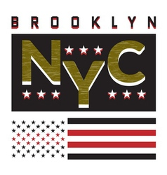 T-shirt ny city 3 vector