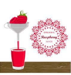 the theme raspberry vector image vector image