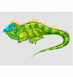 Wild lizard on transparent background vector